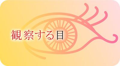 designers-eye.jpg
