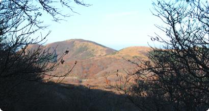 久住山からの風景写真
